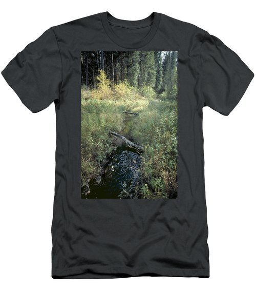 Mississippi River Headwaters Men's T-Shirt (Athletic Fit)