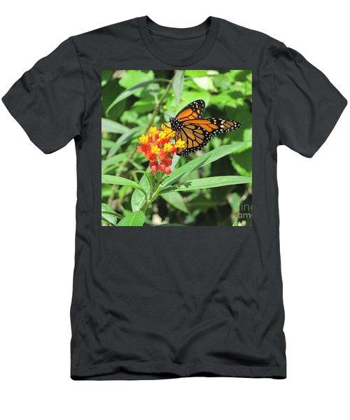 Monarch At Rest Men's T-Shirt (Athletic Fit)