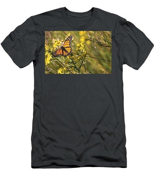 Monarch Hatch Men's T-Shirt (Athletic Fit)