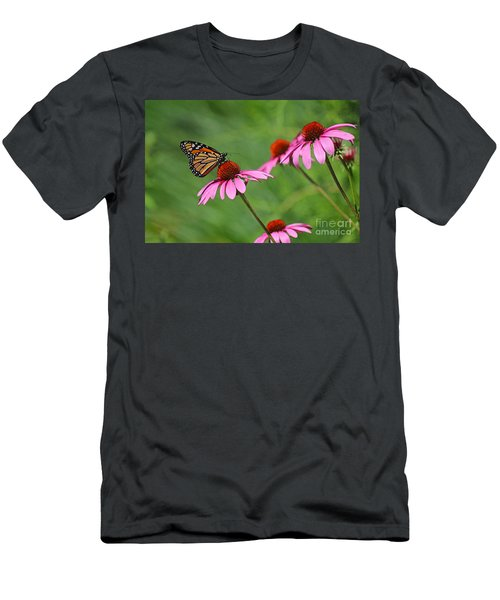 Monarch On Garden Coneflowers Men's T-Shirt (Athletic Fit)