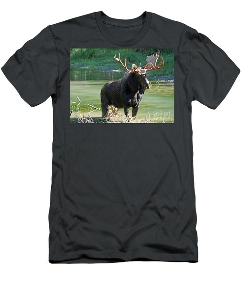 Moose Country Men's T-Shirt (Slim Fit) by Bob Hislop