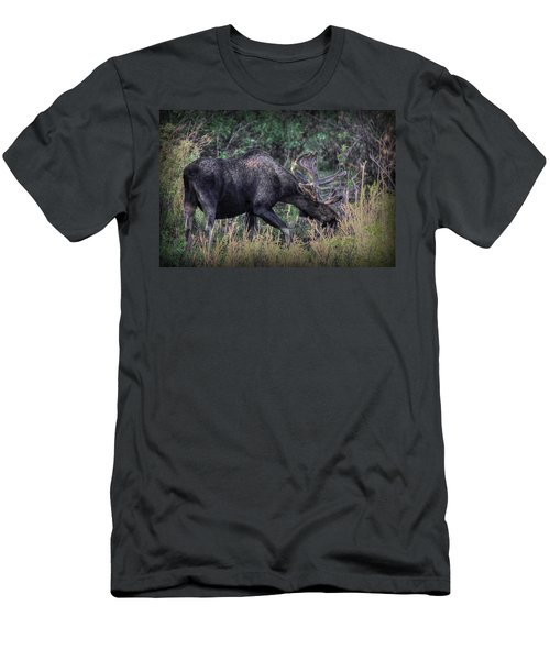 Moose In The Meadow Men's T-Shirt (Athletic Fit)