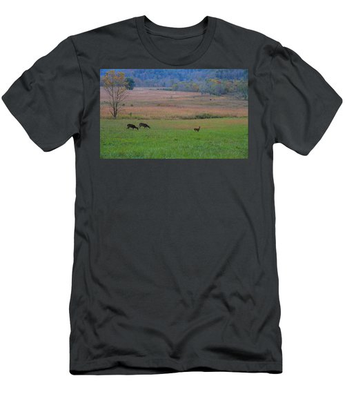 Morning Deer In Cades Cove Men's T-Shirt (Athletic Fit)