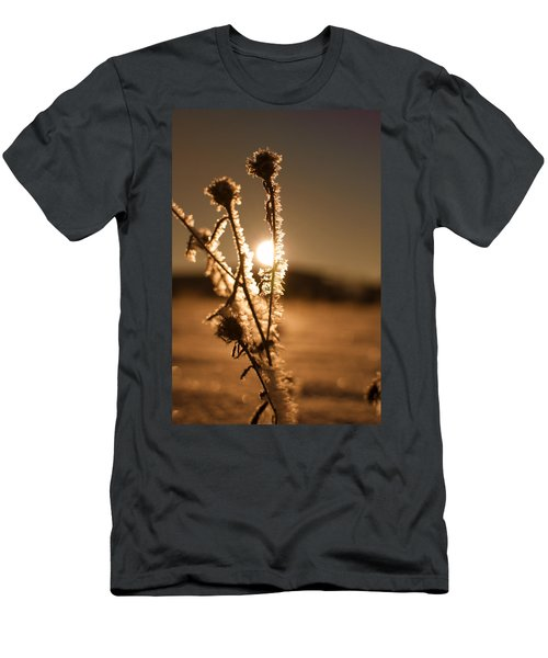 Morning Walk Men's T-Shirt (Slim Fit) by Miguel Winterpacht