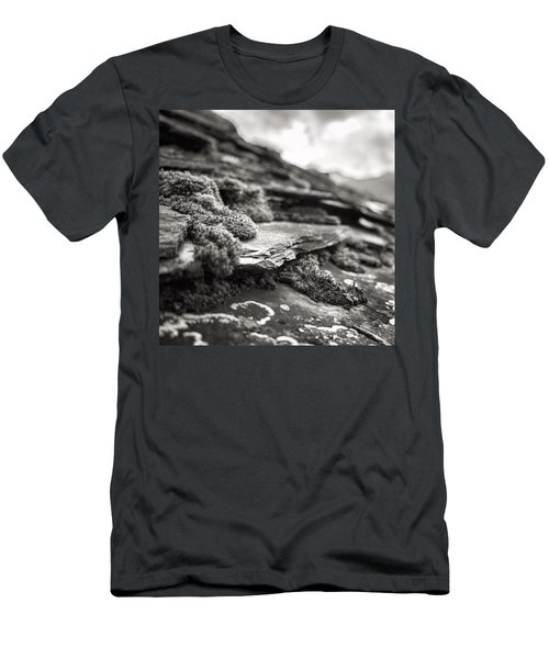 Moss In Jance Men's T-Shirt (Athletic Fit)