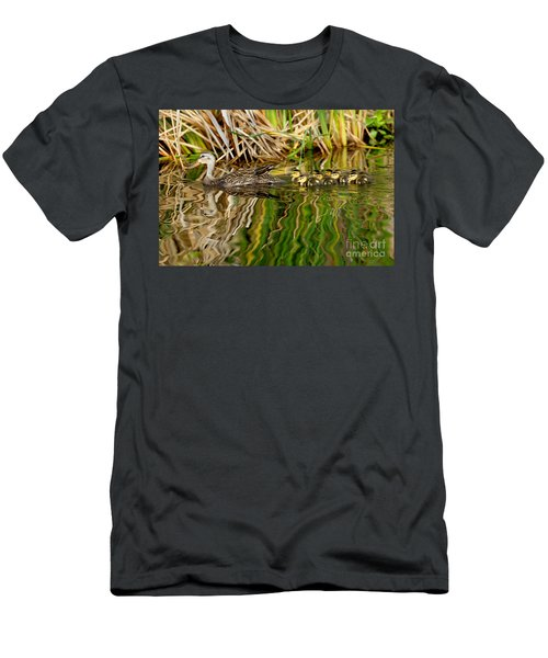 Mottled Duck And Young Men's T-Shirt (Athletic Fit)