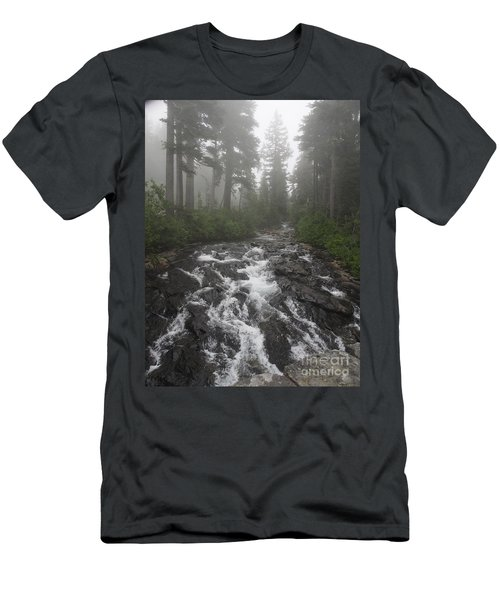 Mount Rainier National Park Men's T-Shirt (Athletic Fit)