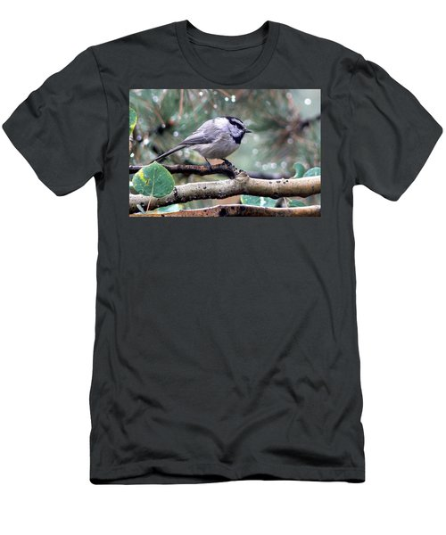 Mountain Chickadee On A Rainy Day Men's T-Shirt (Athletic Fit)