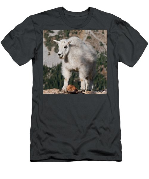 Mountain Goat Kid Standing On A Boulder Men's T-Shirt (Athletic Fit)