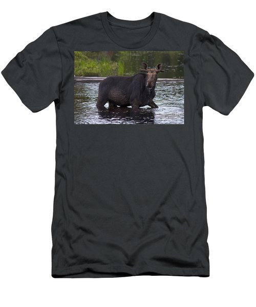 Mr. Moose.. Men's T-Shirt (Athletic Fit)