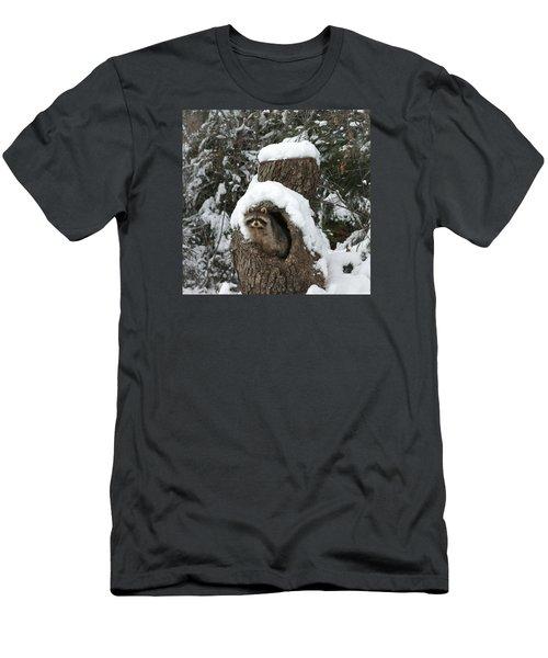 Mr. Raccoon Men's T-Shirt (Slim Fit) by Diane Bohna