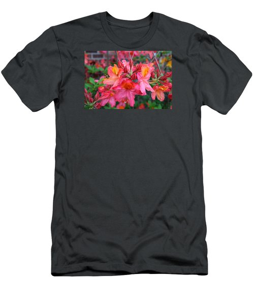 Mt St Helens Azalea Men's T-Shirt (Slim Fit) by Kathryn Meyer