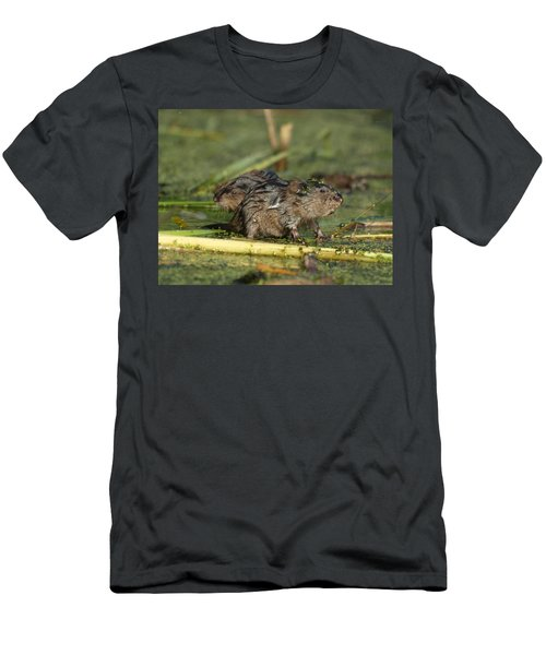 Men's T-Shirt (Athletic Fit) featuring the photograph Munchkins by James Peterson