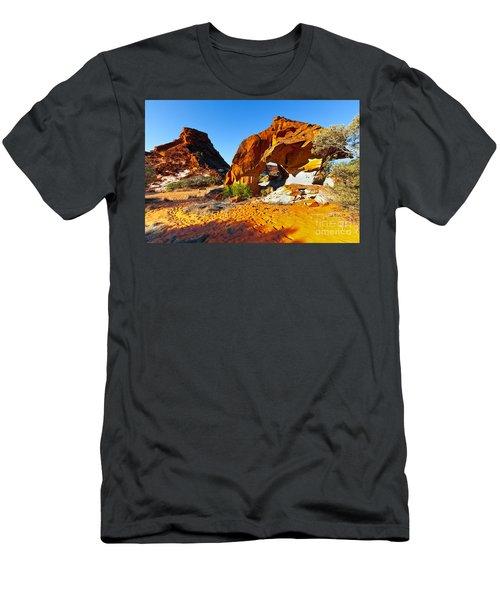 Mushroom Rock Rainbow Valley Men's T-Shirt (Athletic Fit)