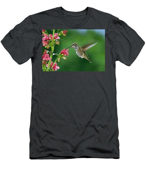 My Favorite Flowers Men's T-Shirt (Athletic Fit)