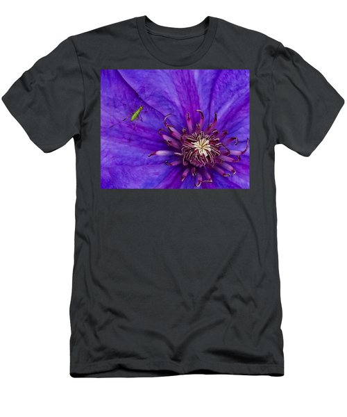 My Old Clematis Home Men's T-Shirt (Athletic Fit)