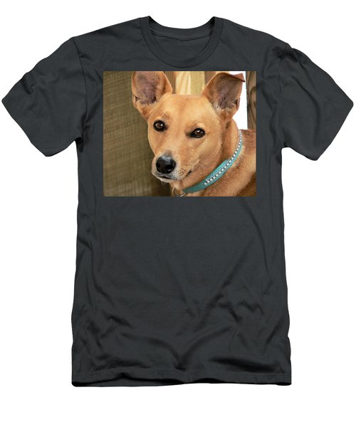 Dog - Cookie One Men's T-Shirt (Athletic Fit)