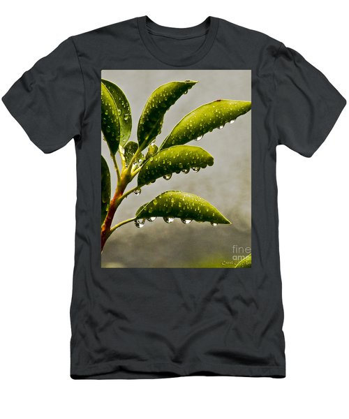 Natures Teardrops Men's T-Shirt (Slim Fit) by Carol F Austin