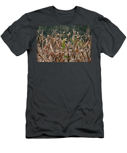 Neball Corn Field Men's T-Shirt (Athletic Fit)