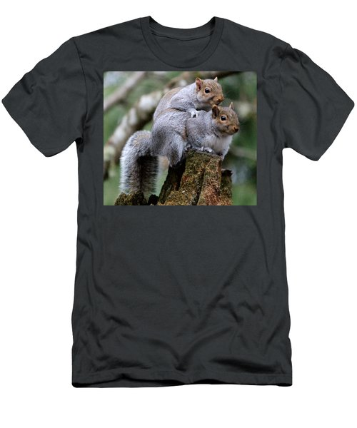 Fifty Shades Of Gray Squirrel Men's T-Shirt (Athletic Fit)