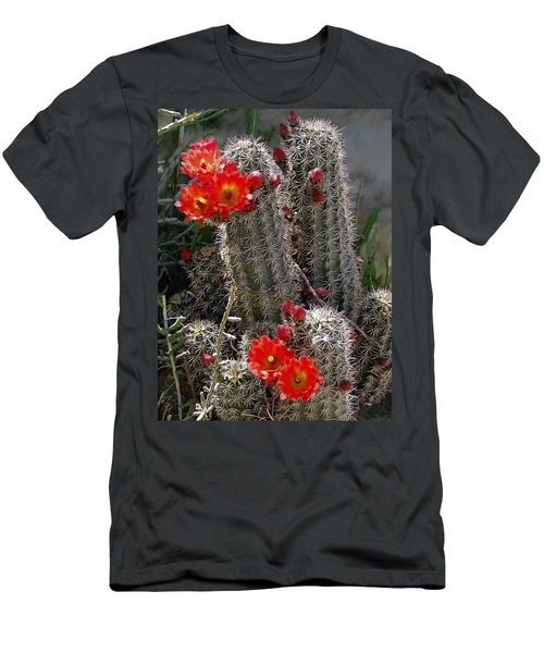 New Mexico Cactus Men's T-Shirt (Athletic Fit)