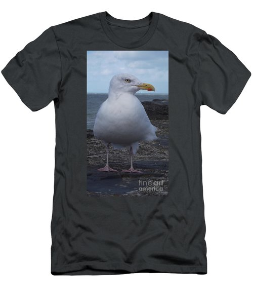 New Quay Gull  Men's T-Shirt (Slim Fit) by John Williams