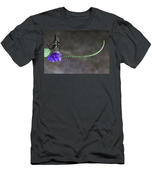 Butterfly - Tailed Jay II Men's T-Shirt (Athletic Fit)