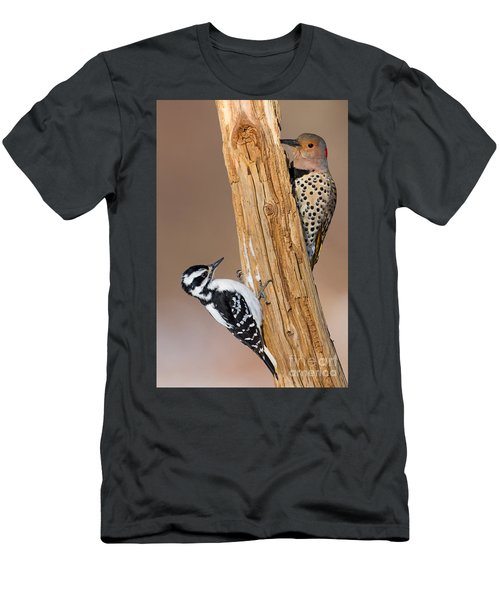 Northern Flicker And Hairy Woodpecker Men's T-Shirt (Athletic Fit)