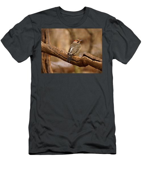 Northern Flicker II Men's T-Shirt (Athletic Fit)