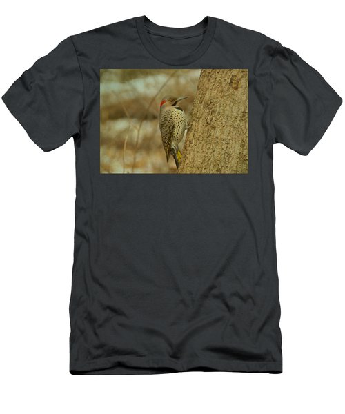 Northern Flicker On Tree Men's T-Shirt (Athletic Fit)