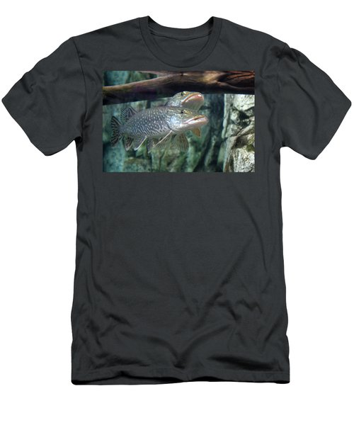 Northern Pike Men's T-Shirt (Athletic Fit)