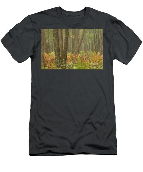 Oak Openings Fog Forest Men's T-Shirt (Athletic Fit)