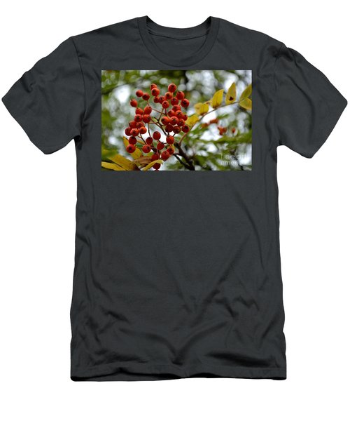 Orange Autumn Berries Men's T-Shirt (Athletic Fit)