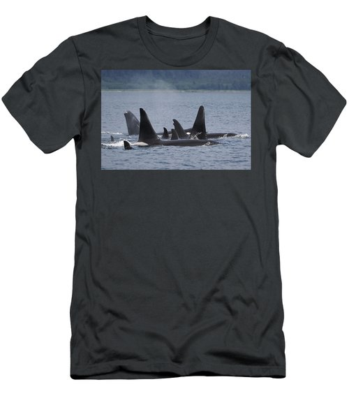 Orca Pod Surfacing Prince William Sound Men's T-Shirt (Athletic Fit)