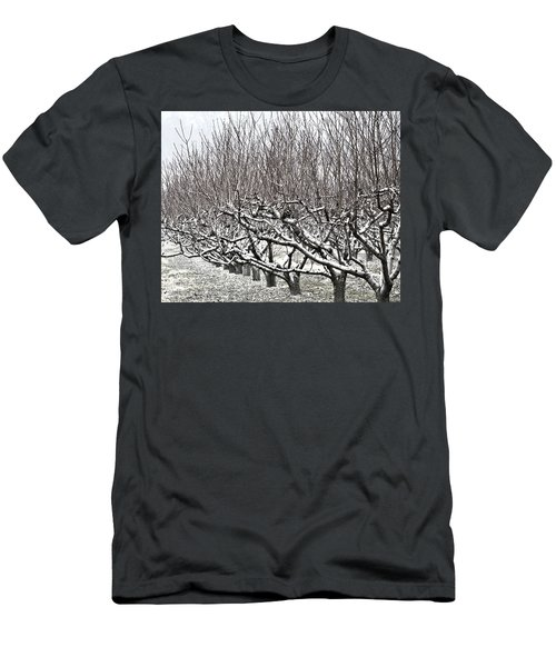Orchard In Winter Men's T-Shirt (Athletic Fit)