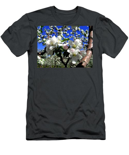 Orchard Ovation Men's T-Shirt (Athletic Fit)