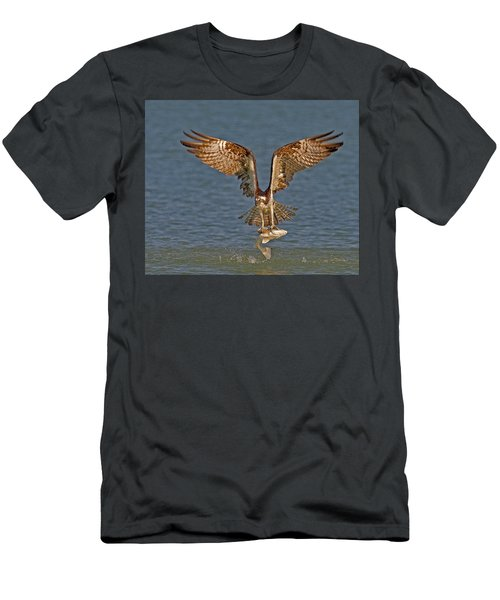Osprey Morning Catch Men's T-Shirt (Athletic Fit)