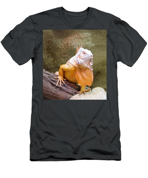 Out Of Africa Orange Lizard 1 Men's T-Shirt (Athletic Fit)