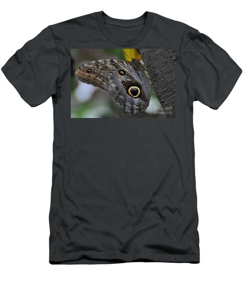 Men's T-Shirt (Slim Fit) featuring the photograph Owl Butterfly by Bianca Nadeau