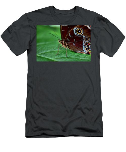 Owl Butterfly Men's T-Shirt (Athletic Fit)
