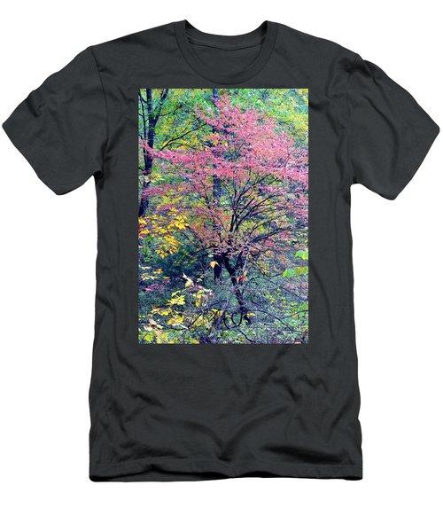 Ozarks Autumn Men's T-Shirt (Slim Fit) by Deena Stoddard
