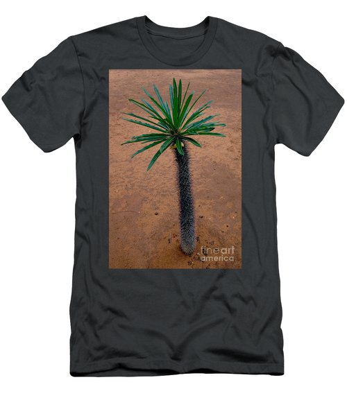 Pachypodium Sapling Men's T-Shirt (Athletic Fit)