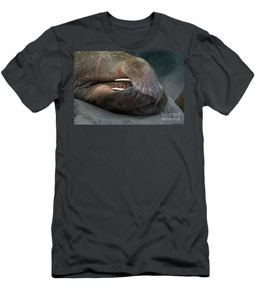 Pacific Walrus Snoozing  Men's T-Shirt (Athletic Fit)
