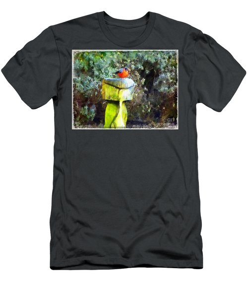 Painted Bullfinch S2 Men's T-Shirt (Athletic Fit)