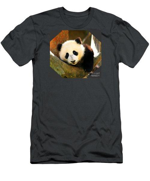 Panda Bear Baby Love Men's T-Shirt (Athletic Fit)