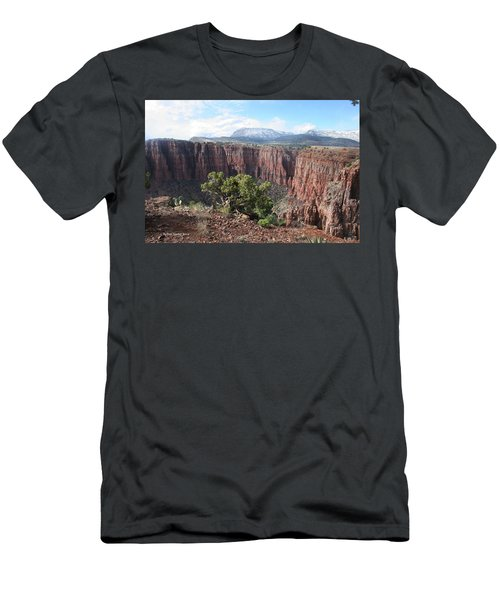 Men's T-Shirt (Slim Fit) featuring the photograph Parker Canyon In The Sierra Ancha Arizona by Tom Janca