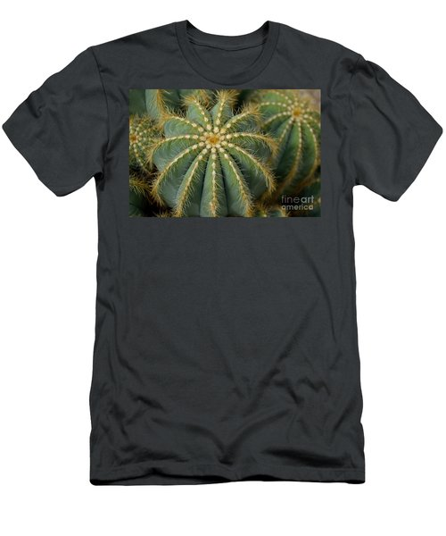 Parodia Magnifica Men's T-Shirt (Athletic Fit)