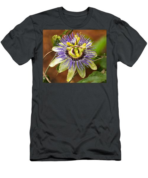 Passion Flower Men's T-Shirt (Athletic Fit)