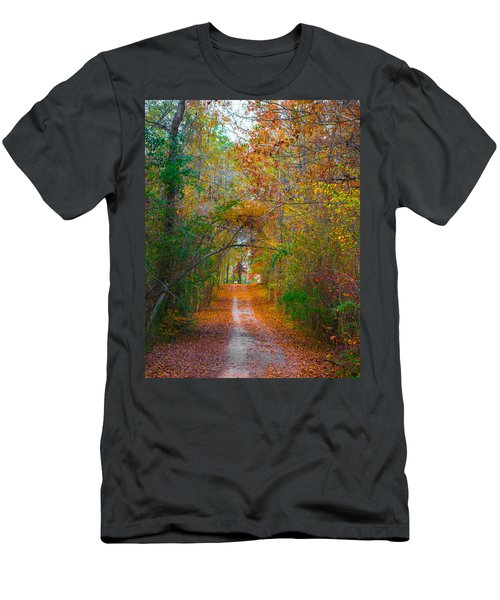 Path To The Fairies Men's T-Shirt (Athletic Fit)