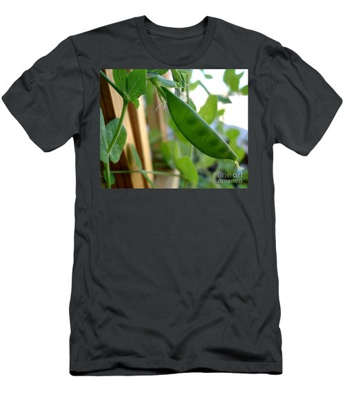 Pea Pod Growing Men's T-Shirt (Athletic Fit)